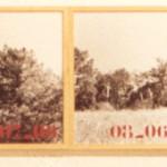 1993-An - onoma, diverse materialen, 450x40cm, Aranda de Duero