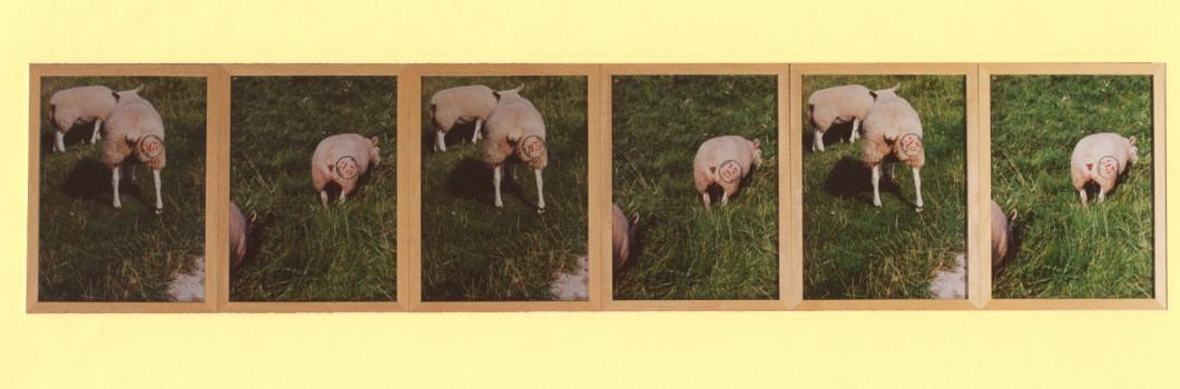 1993-Idilico '93, gestempelde foto's, 194x50cm