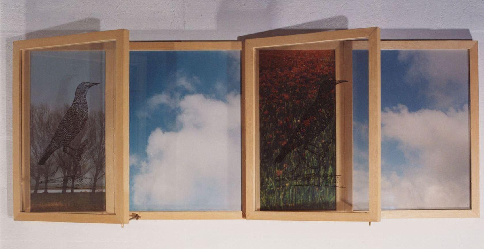 1994-Overwinteraar, foto's, koperen haken, 130x43x15cm