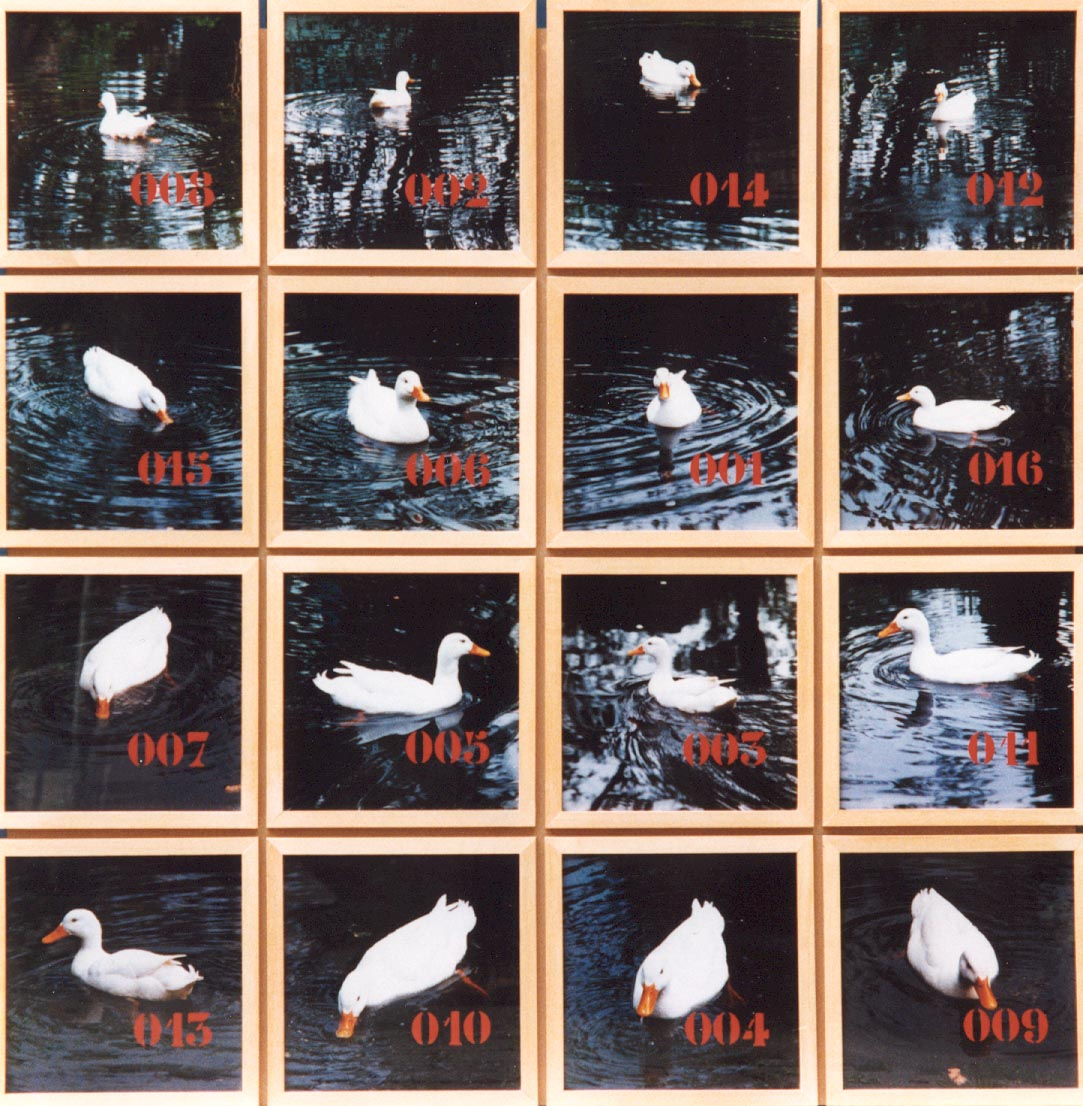 1994-z.t.- Hazerswoude, foto's, lak, 136x136cm