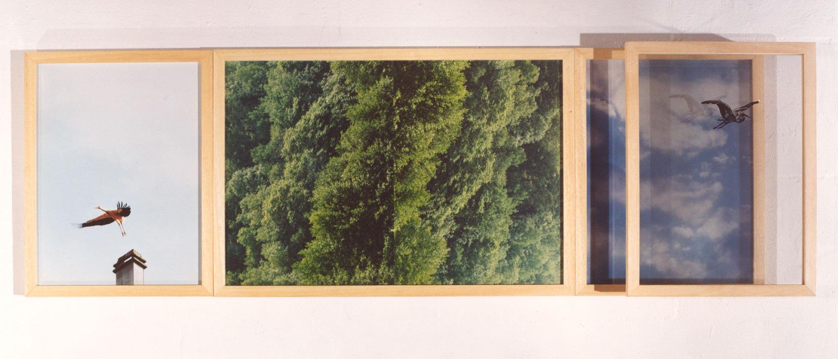 1994-z.t.- Vogezen, foto's, 140x45x10cm