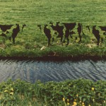 1995-Bertha e.a.- foto's, lak, 265x58cm