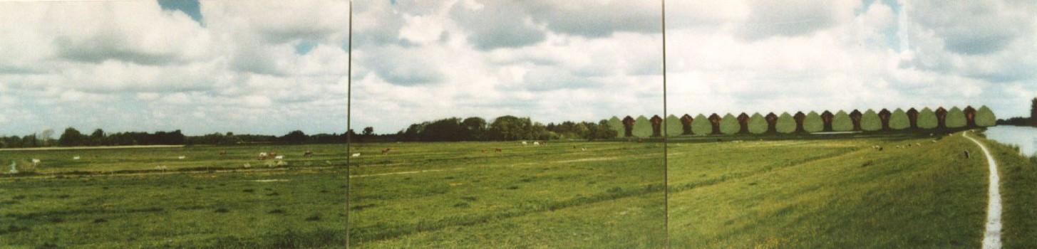 1996-Ackerdijkse polder- foto's, lak, perspex, 210x57cm