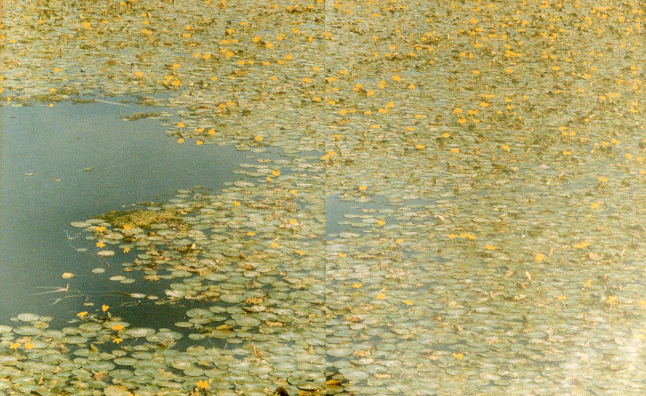 1997-Klein, maar belangrijk detail van '97- foto's, lak, 52x82cm