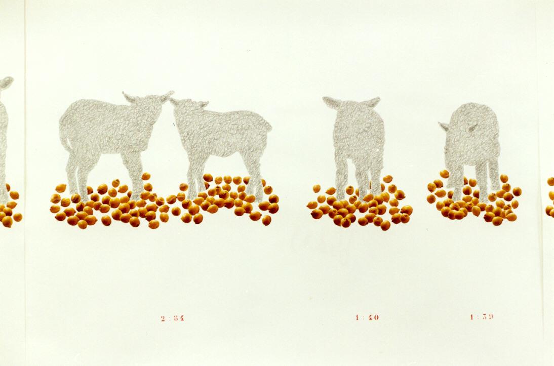 2001-ZOETxZUUR- detail