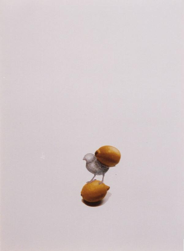 2002-z.t.- mus met citroen op nek - collage, foto's, kleurpotlood, inkt, 71x52cm