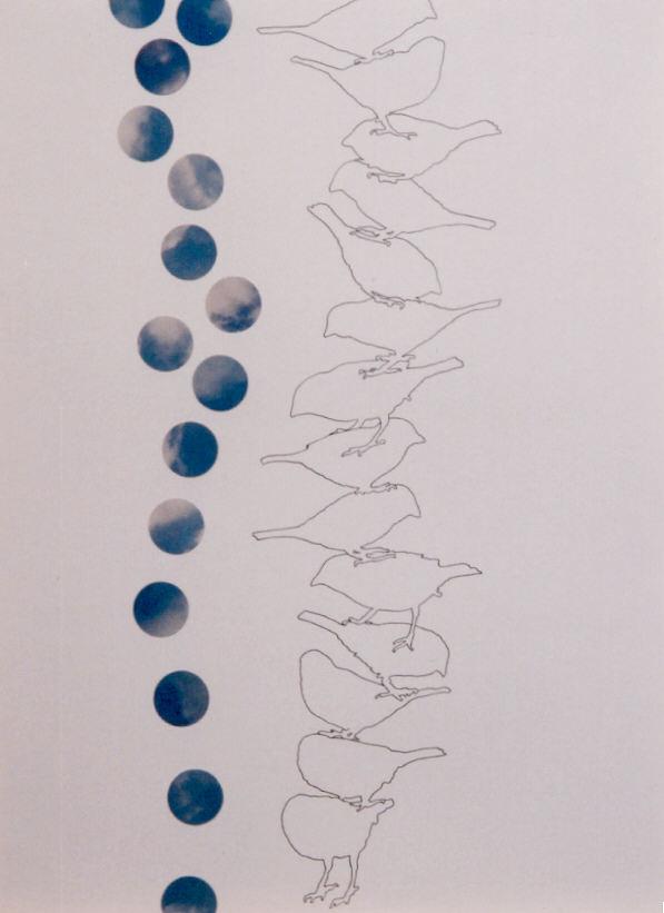 2002-z.t.- mussen met waterballen - collage, foto's, inkt, 71x52cm
