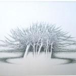 2004-het gebeurde in het bosje...grafiet, kleurpotlood, 70x110cm