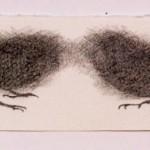 2004-z.t.-2 musjes in grafiet , grafiet op papier, 16x44cm