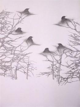 2004-z.t.- grafiet op papier, 110x82cm