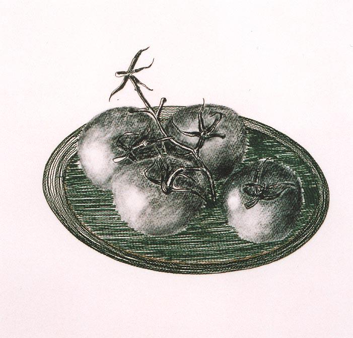 2005-Van tomaten word je groot! 3, syberisch krijt, garen, 36x36cm