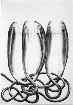 2005-uit serie caminar y buscar en Callosa, PESCADO 1, syberisch krijt, pastel, 110x80cm
