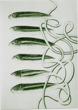 2005-uit serie caminar y buscar en Callosa, PESCADO 4, syberisch krijt, pastel, 110x80cm