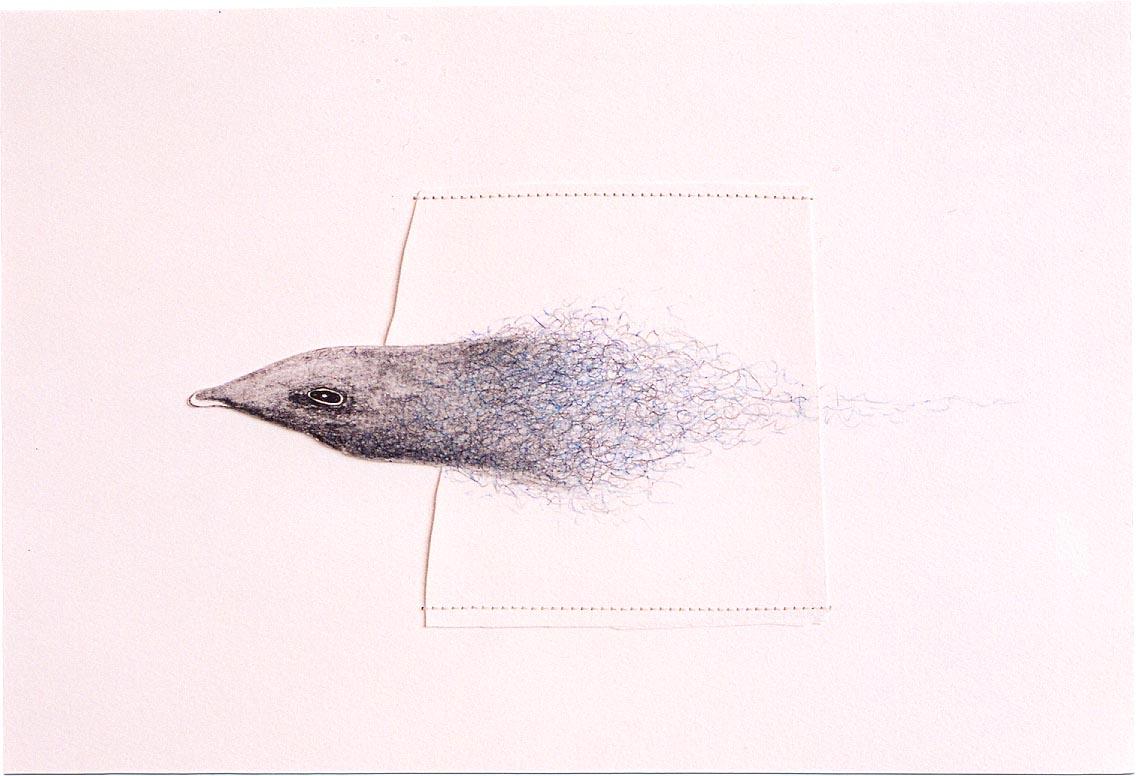 2005-z.t.-grafiet, kleurpotlood.garen, 33x43cm