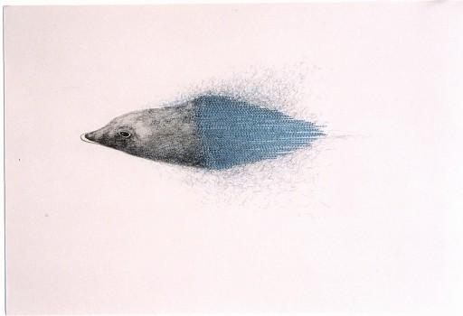 2005-z.t.-grafiet, kleurpotlood,garen, 36x51cm