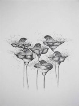 2007-4-zonder titel, grafiet op papier, 60x50cm