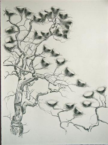 2007-5-zonder titel, grafiet op papier, 122x82cm