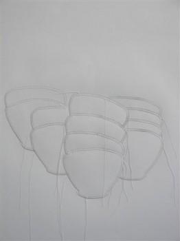 2007-zonder titel, papier,garen, 60x50cm
