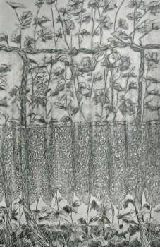 2008-2-zonder titel, grafiet en conte op papier, 122x82cm