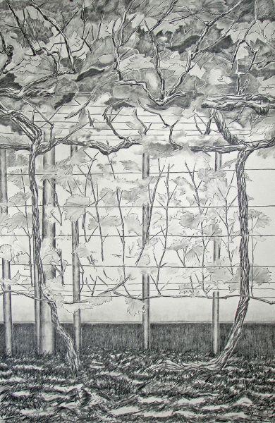 2008-zonder titel, grafiet op papier, 122x82 cm