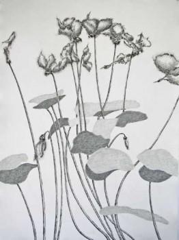 2011-stille getuige 2, grafiet en conte op-papier, 111x83cm