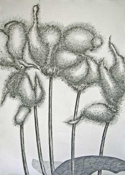2011-stille getuige 4, grafiet en conte-op papier, 111x83cm